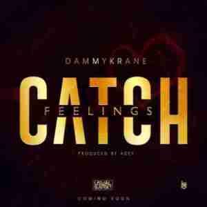 Dammy Krane - Catch Feelings